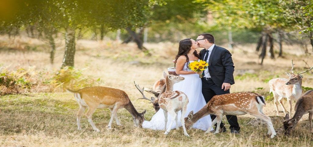 Ce trebuie sa evitati in planificarea unei nunti?